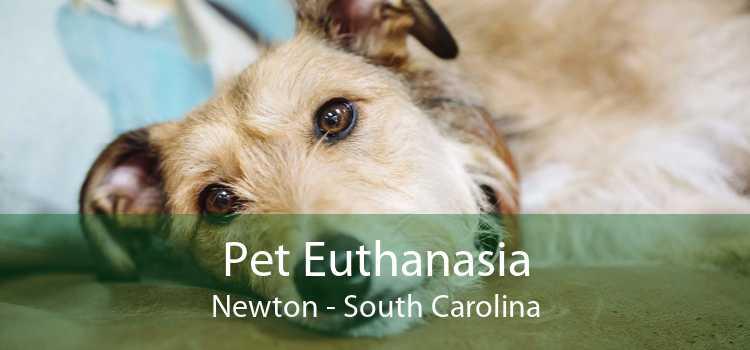 Pet Euthanasia Newton - South Carolina