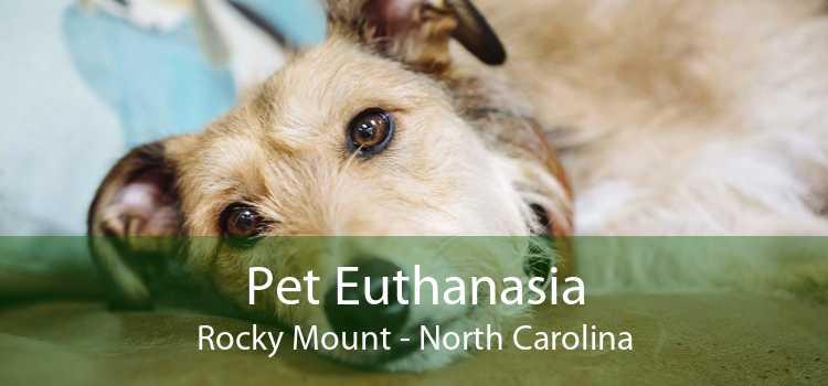 Pet Euthanasia Rocky Mount - North Carolina
