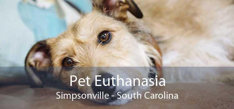 Pet Euthanasia Simpsonville - South Carolina