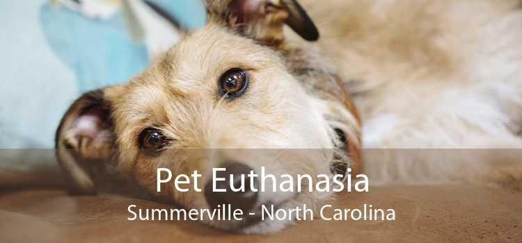 Pet Euthanasia Summerville - North Carolina