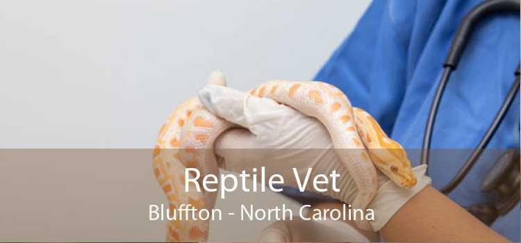 Reptile Vet Bluffton - North Carolina