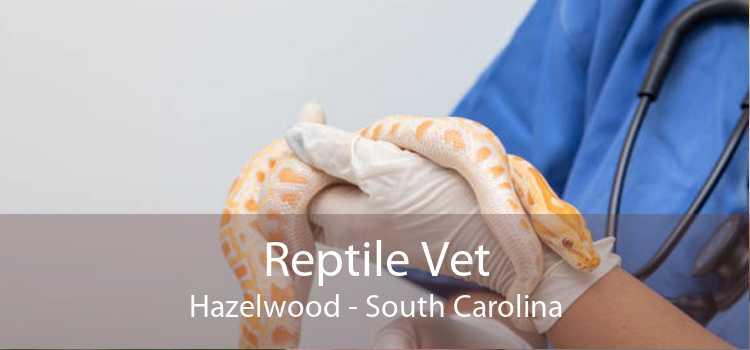 Reptile Vet Hazelwood - South Carolina
