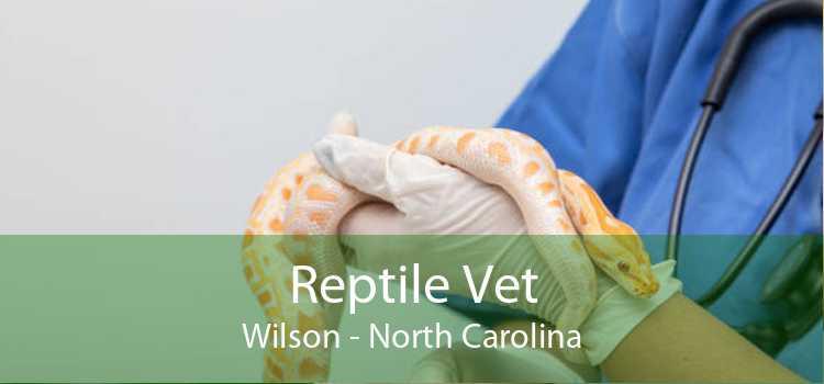 Reptile Vet Wilson - North Carolina