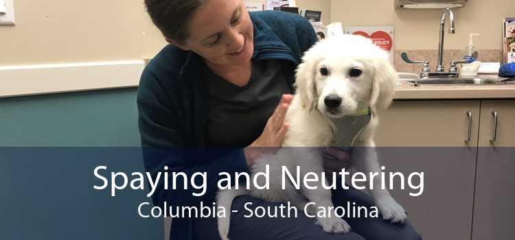 Spaying and Neutering Columbia - South Carolina
