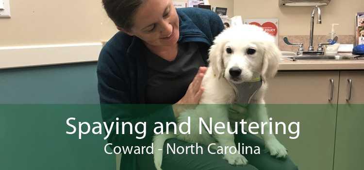 Spaying and Neutering Coward - North Carolina