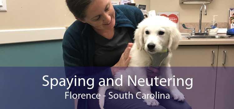 Spaying and Neutering Florence - South Carolina