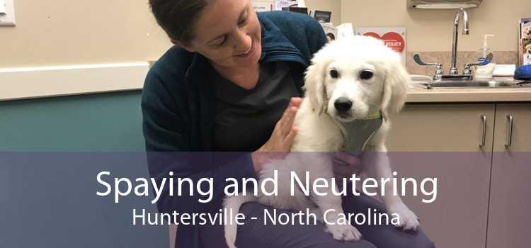 Spaying and Neutering Huntersville - North Carolina