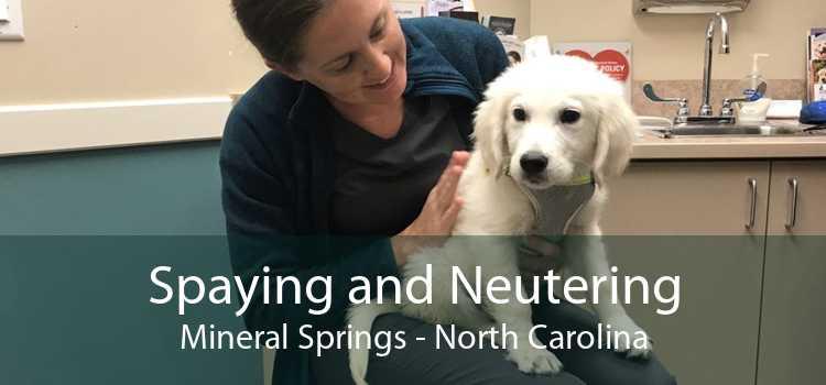 Spaying and Neutering Mineral Springs - North Carolina
