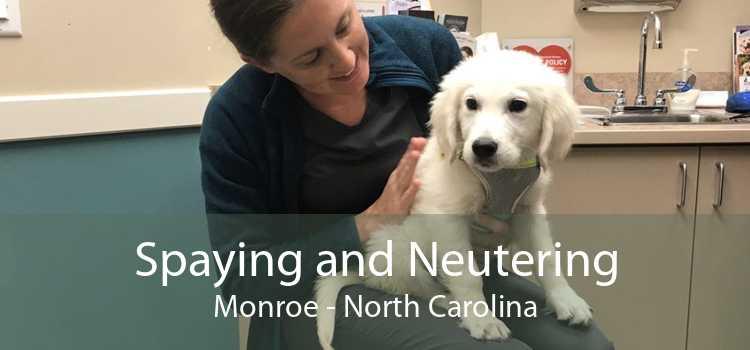 Spaying and Neutering Monroe - North Carolina