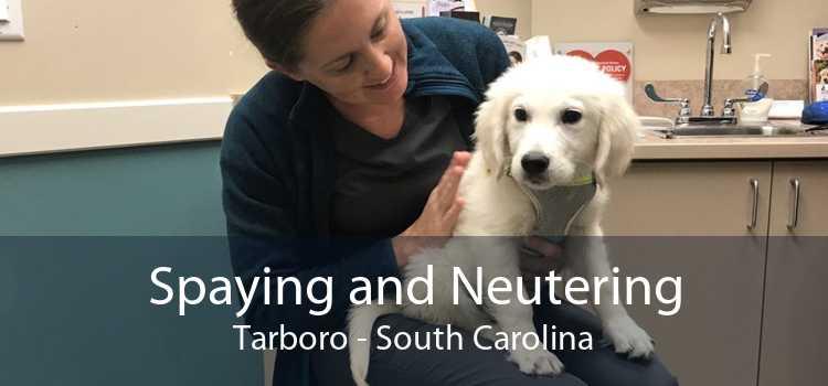 Spaying and Neutering Tarboro - South Carolina