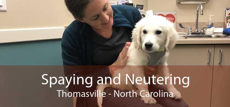Spaying and Neutering Thomasville - North Carolina