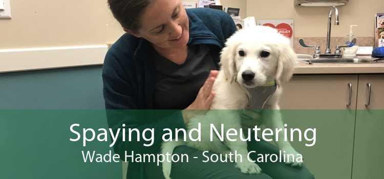 Spaying and Neutering Wade Hampton - South Carolina