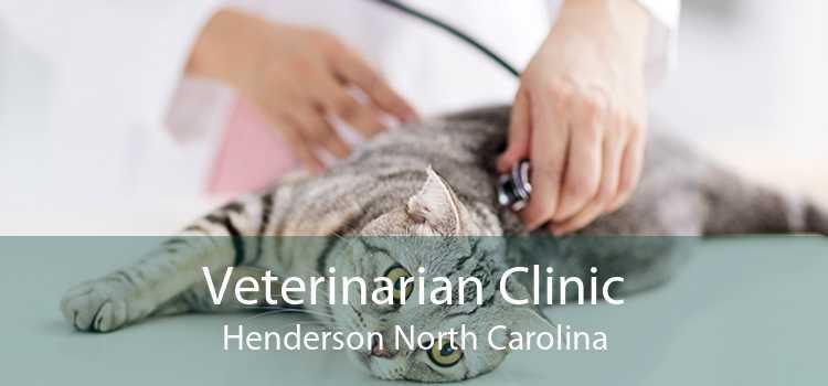 Veterinarian Clinic Henderson North Carolina