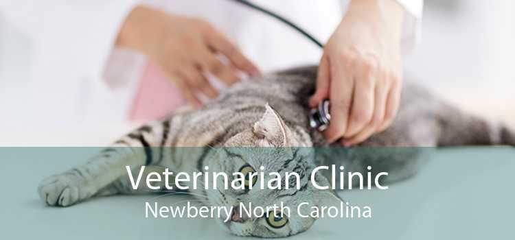 Veterinarian Clinic Newberry North Carolina