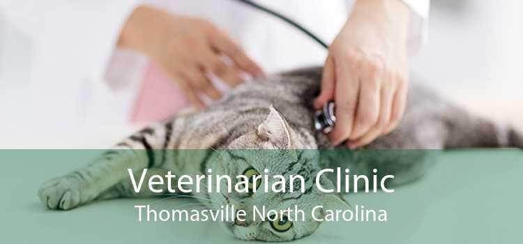 Veterinarian Clinic Thomasville North Carolina